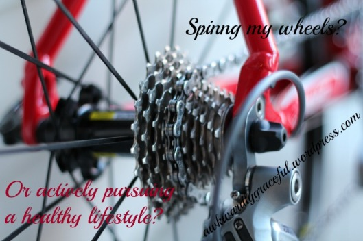 EDIT bicycle gears.jpg