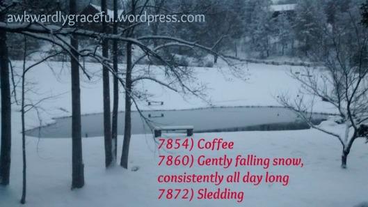 7800 Snow